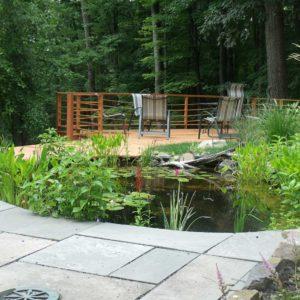backyard-ponds-of-the-hudson-valley