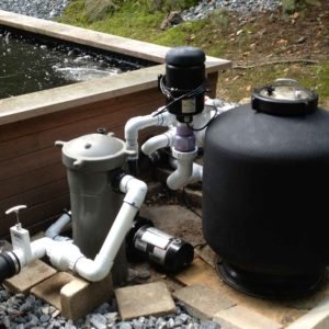 bead-filter-with-canister-in-westchester-county-ny