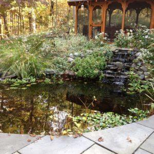 gorgeous-koi-ponds-of-westchester-ny