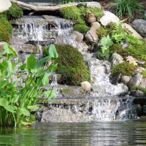 hudson-valley-water-gardens-ny
