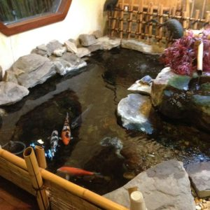 indoor-koi-pond-new-york