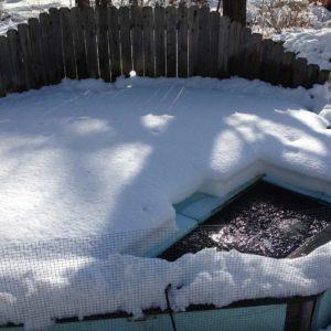 koi-pond-winterization-westchester-county-ny