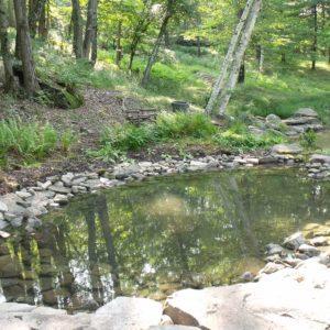 pond-design-woodstock-ny