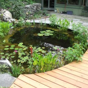 pond-westchester-ny