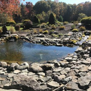 ponds-of-stoneridge-ny