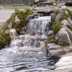 ulster-county-koi-pond-maintenance