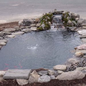 water-garden-pond-maintenance-new-york-ny