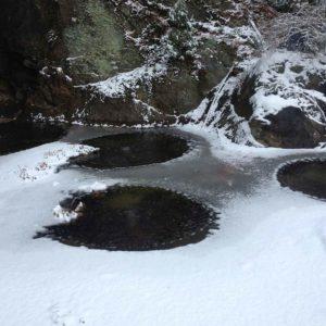 winter-koi-pond-columbia-county-ny