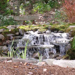 woodstock-ponds-and-koi
