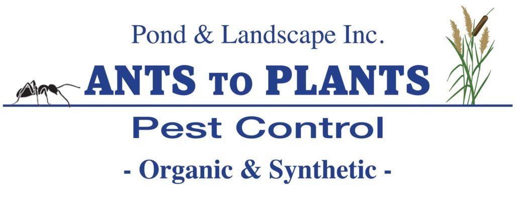 Ants to Plants Pest Control